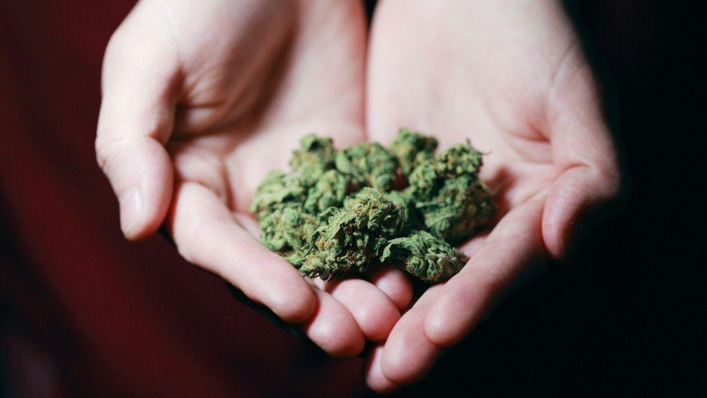 De víctima a villano: denuncia el robo de 4 kilos de marihuana y acaba detenido