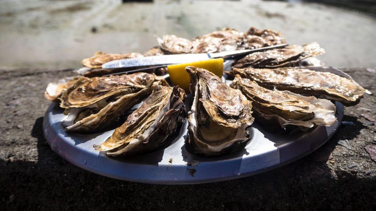 ¿Te has preguntado alguna vez por qué las ostras son tan caras? Mitos y verdades sobre este molusco para gourmets que lleva cientos de años en nuestra buena mesa