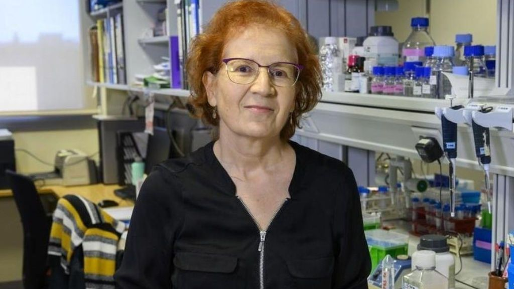 """La viróloga Margarita del Val y su mensaje optimista frente a la Covid-19: """"Toda la población va a ser inmune"""""""