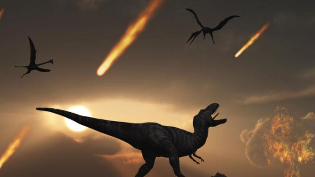 Algas aprendieron a 'cazar' para sobrevivir al final de los dinosaurios y dominar la Tierra