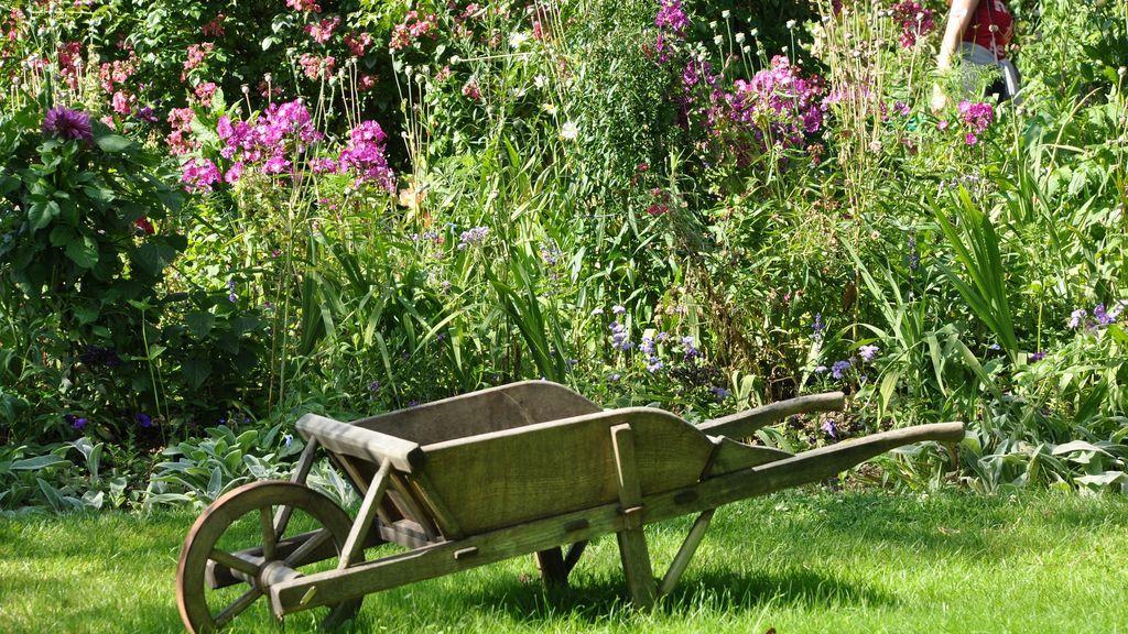 Los mejores cuidados para tu jardín este otoño.