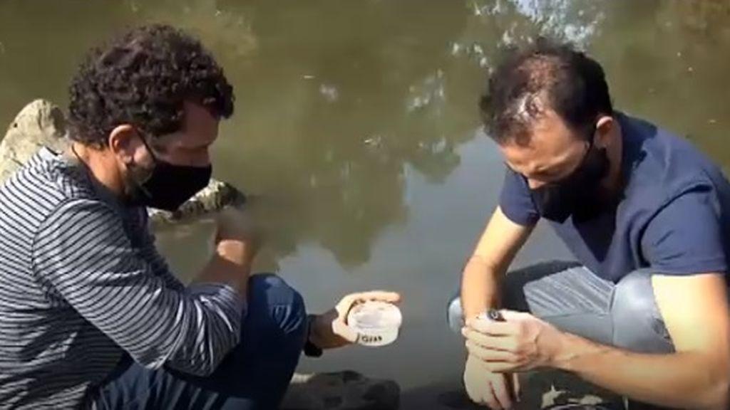 Investigadores españoles crean un protocolo para detectar microplásticos en los ríos