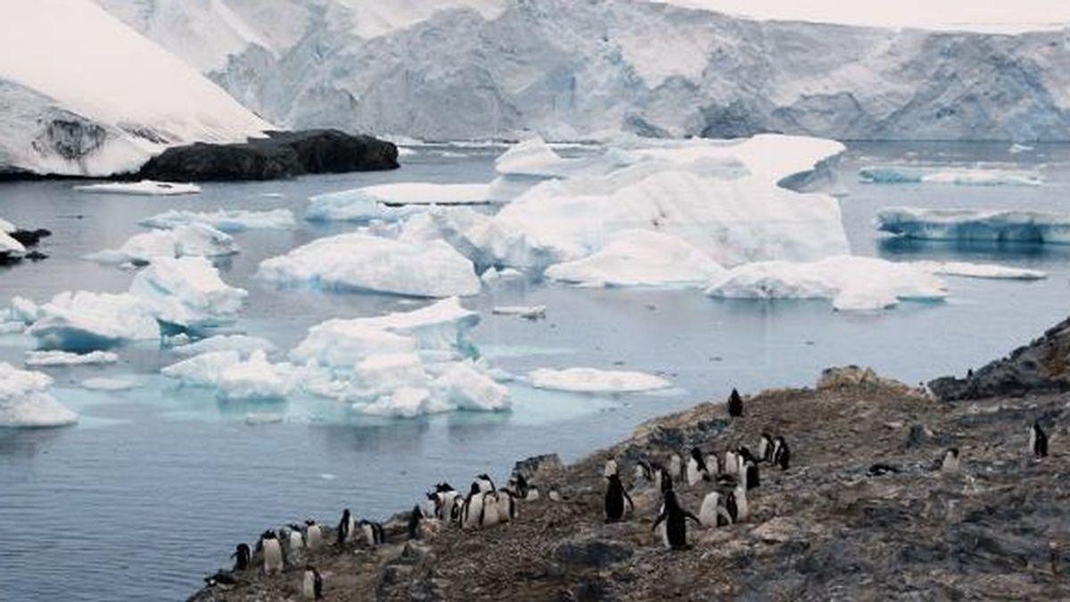 La antártida, el único continente libre del coronavirus: los cientificos tratan de mantenerla limpia