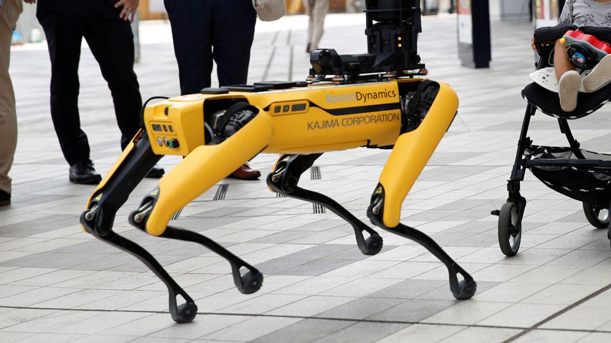 Spot, el perro robot que luchaba contra la covid y que ahora sirve cañas en un bar de Sevilla