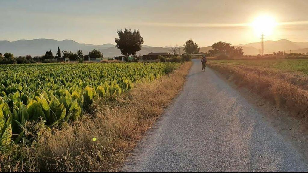 Una bicicleta y una 'Go-Pro': la iniciativa de un pueblo de Granada para que sus vecinos no se salten el confinamiento