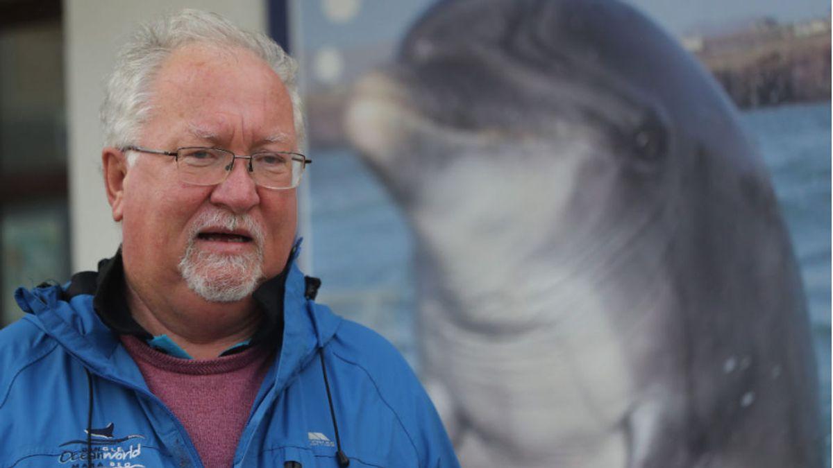 Buscando a Fungie, la historia del delfín desaparecido que deja desolado a un pueblo irlandés