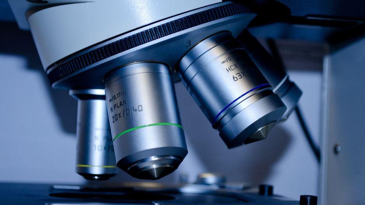 """Amparo Cano, mejor investigadora en cáncer: """"Estamos más cerca de frenar las células que producen metástasis"""""""