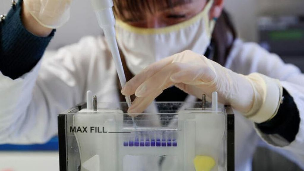 Última hora del coronavirus:  La OMS tranquiliza sobre las vacunas y asegura que no se saltarán ninguna fase