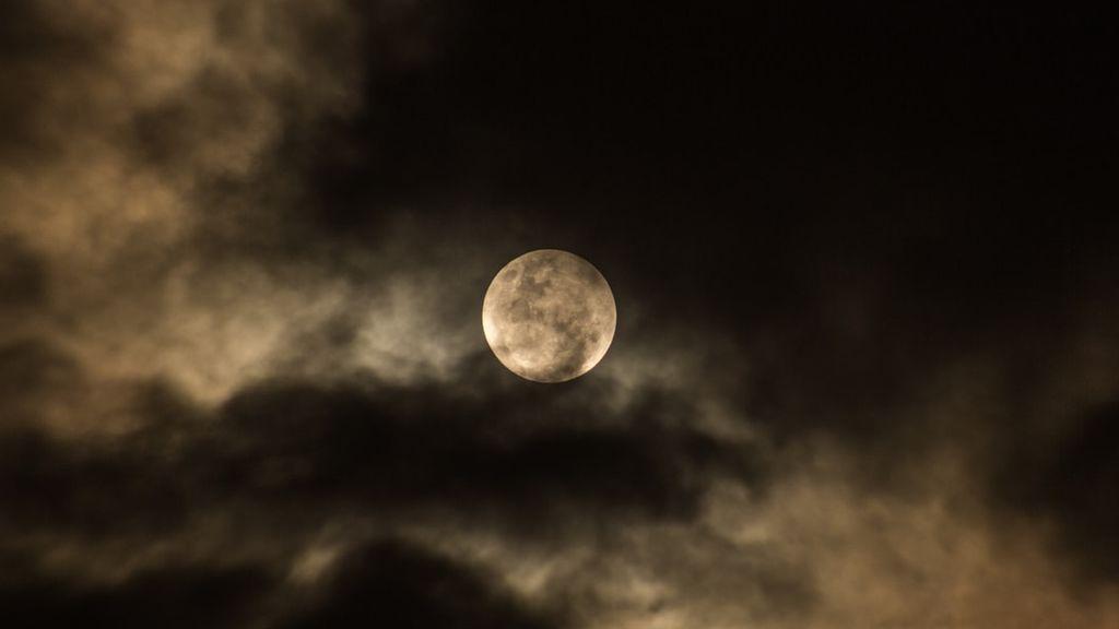 'El vuelo de la tranquilidad': la NASA mandará cenizas humanas a la Luna en 2021