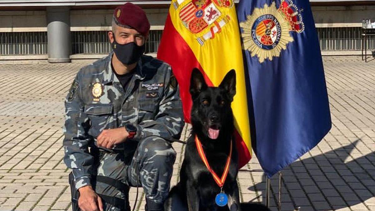 Elko: el perro de los GEO con medalla al mérito policial