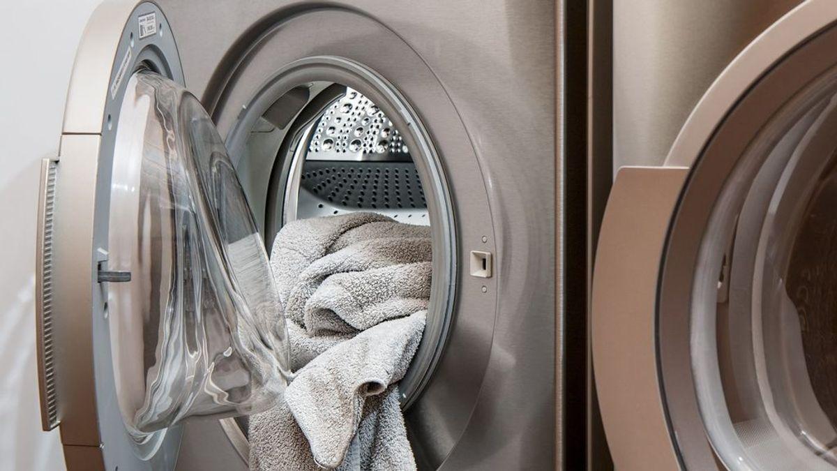 Electrodomésticos a plena carga o no poner comida caliente en el 'frigo': consejos de la OCU para ahorrar energía