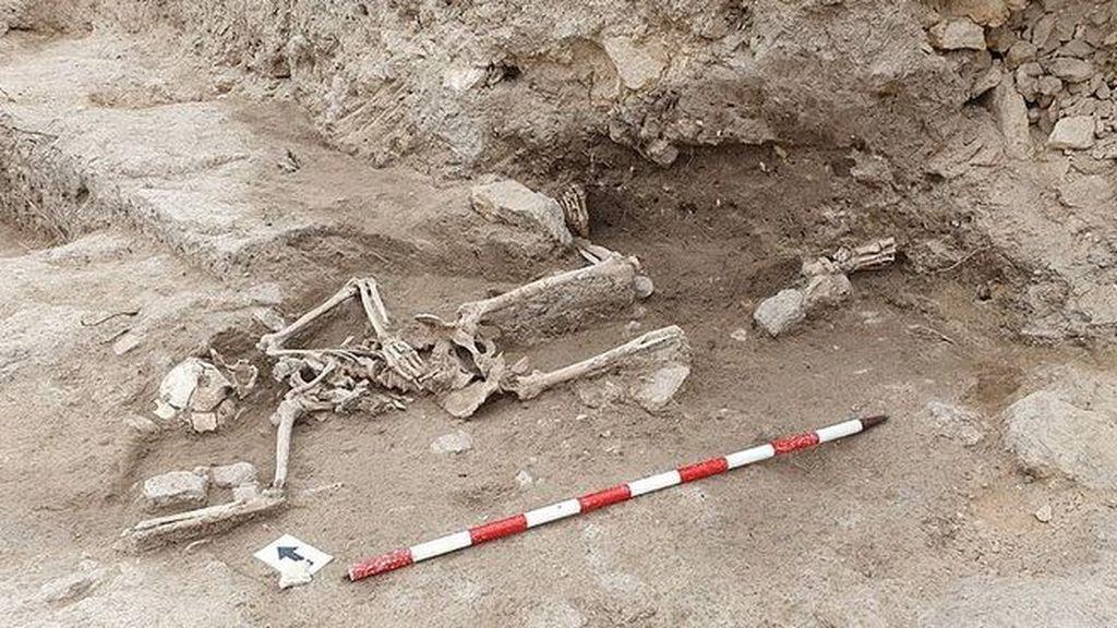 Las 25 cuchilladas a un caballero medieval en Guardamar avivan este misterioso hallazgo arqueológico
