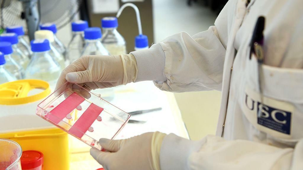 """Andalucía creará un """"Carnet de vacunación"""" de la Covid-19 para poder viajar"""