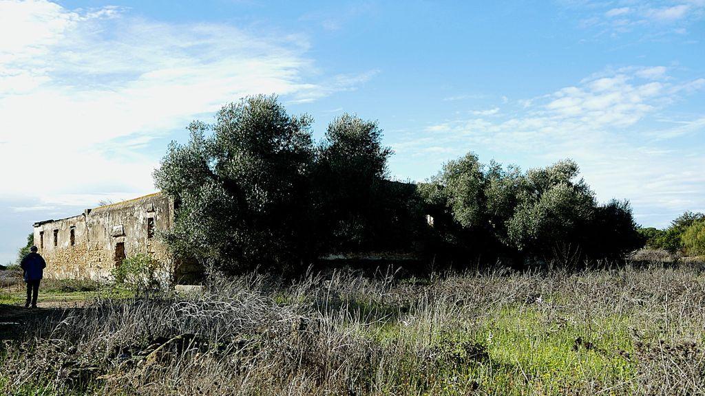 La casa de los Linares que da nombre al bosque