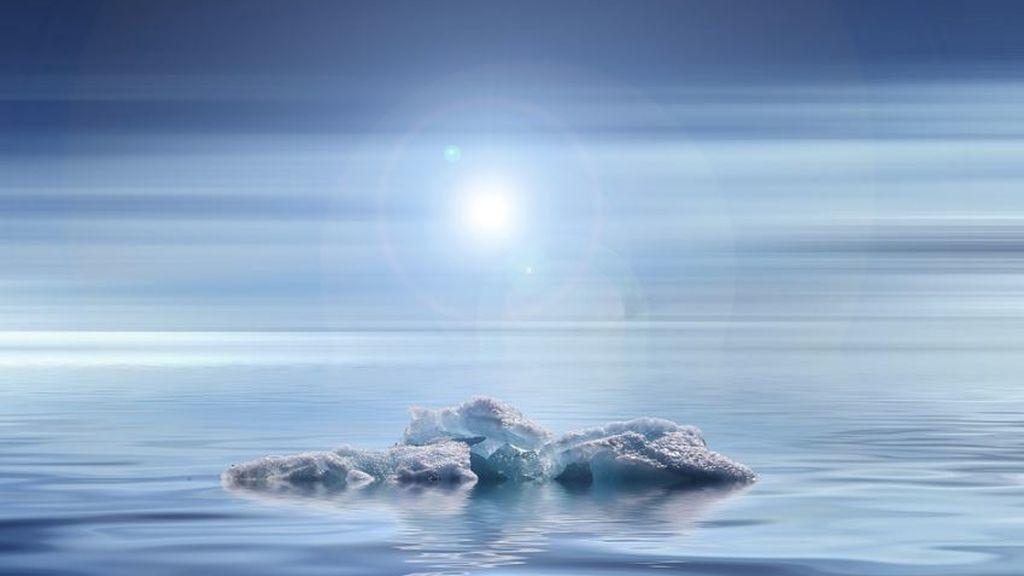 ¿Qué riesgos corremos todos los seres vivos si la Tierra si se queda sin hielo?