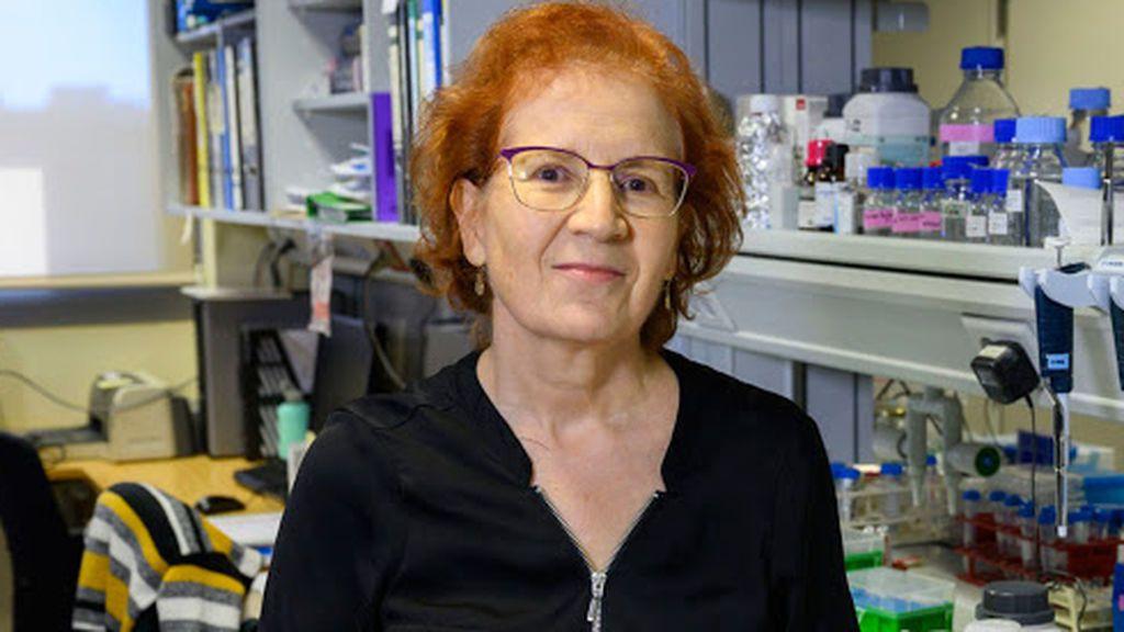 La receta de la viróloga Margarita del Val para evitar contagios en bares, residencias y colegios