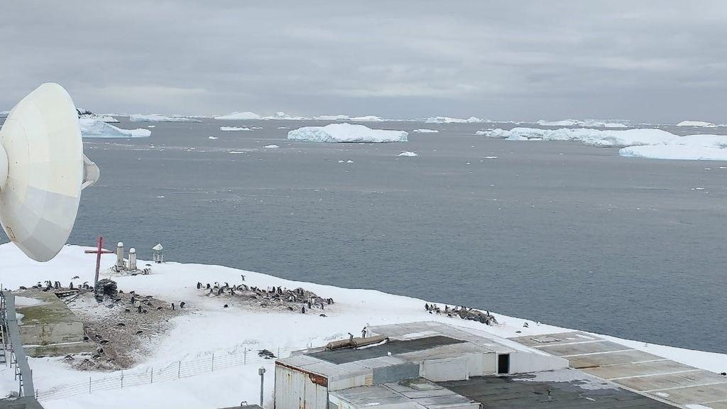 El coronavirus llega a la Antártida, el único continente limpio hasta ahora