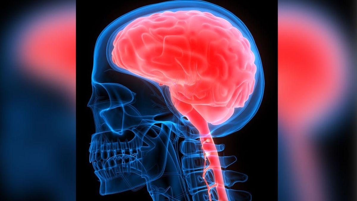 Qué es la encefalitis, la enfermedad que ha desarollado una médica en México tras recibir la vacuna de Pfizer