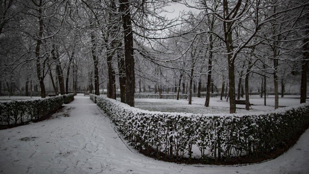 nieve retiro
