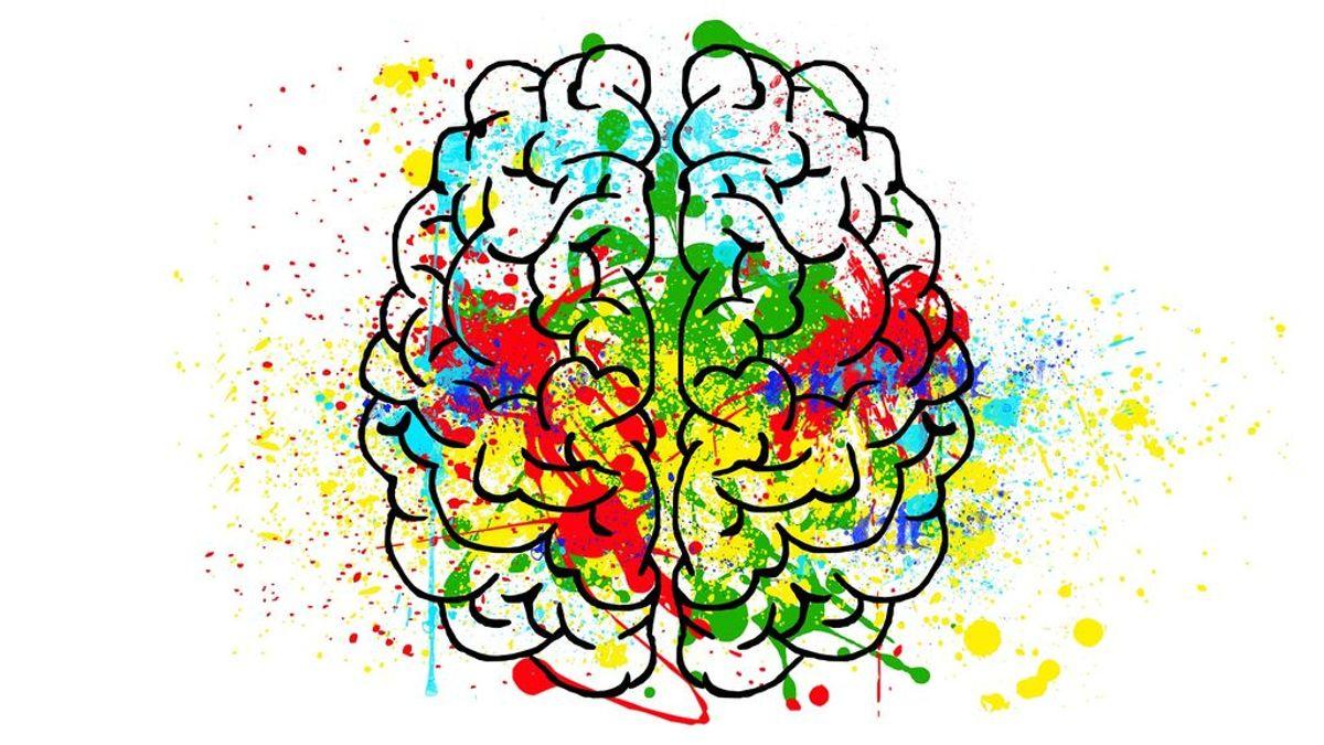 Test: ¿cuál crees que es tu tipo de inteligencia?