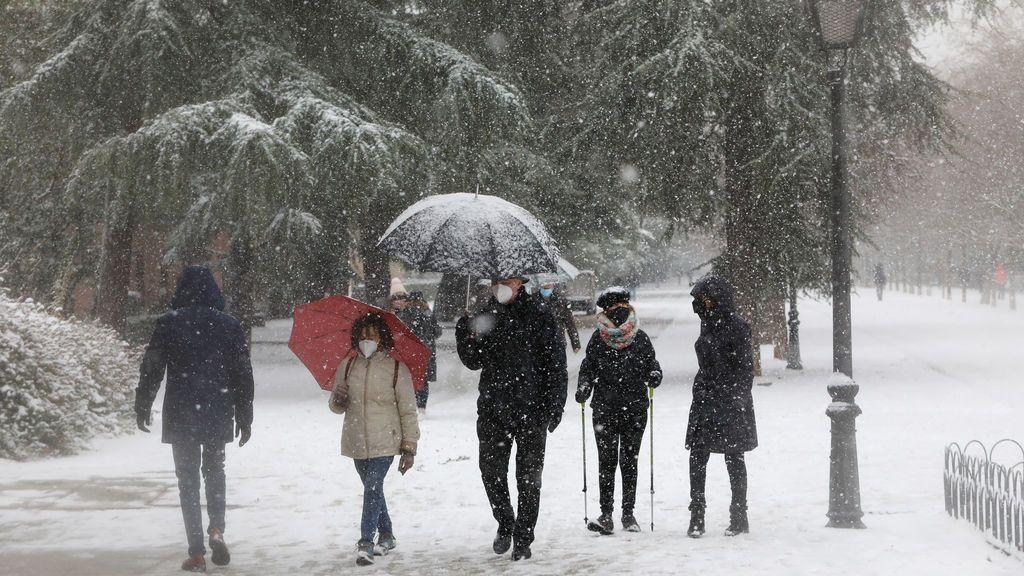 Madrid mantiene el cierre indefinido de parques y zonas verdes por el peligro de caída de árboles