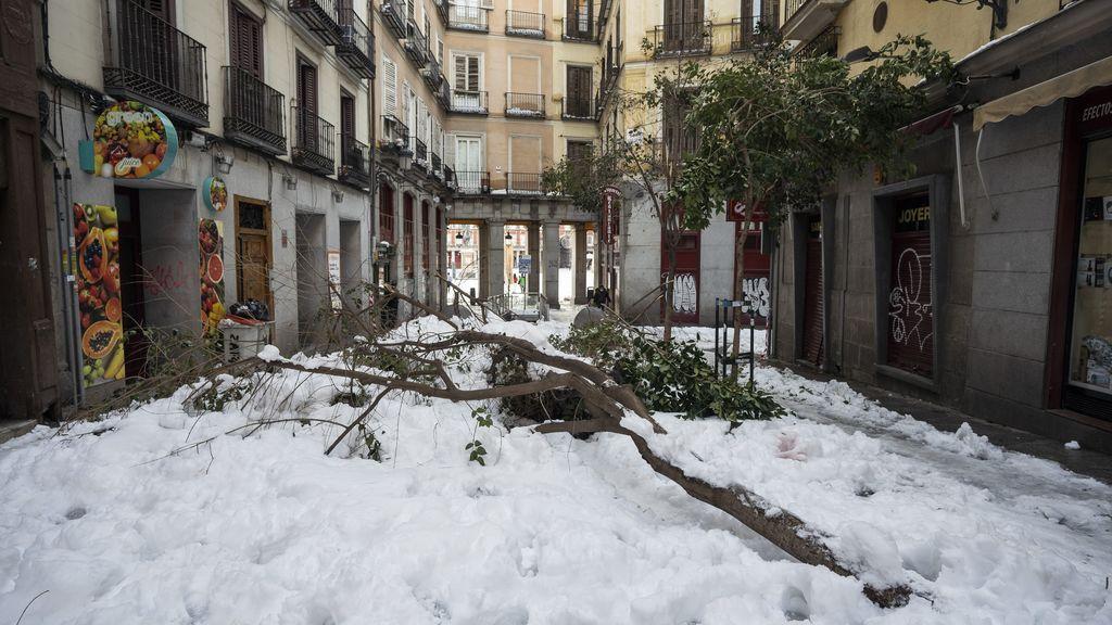 ¿Cómo influye el calentamiento súbito estratosférico en el tiempo en España?