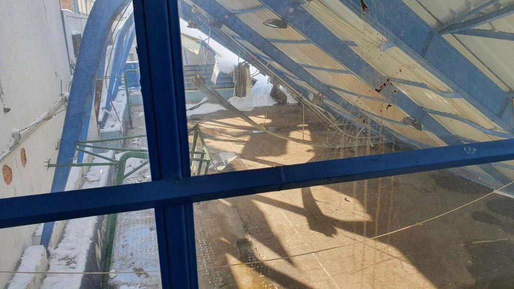 Pabellón de 'La Nevera' con la cubierta caída por la nieve