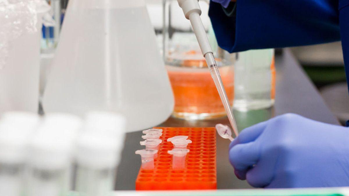 """Un fármaco que proporcionaría """"inmunidad inmediata"""" contra la covid-19, a ensayo"""
