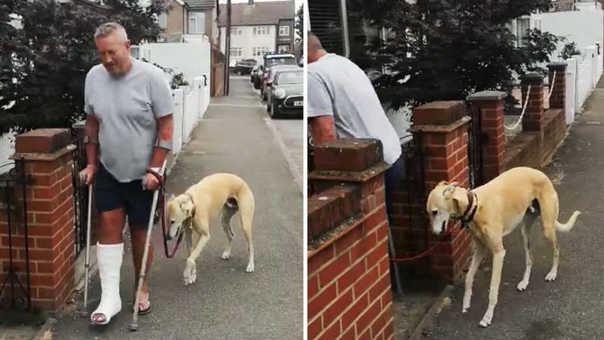 Un hombre gasta más de 300 euros en examinar la cojera de su perro y descubre que el can solo le imitaba