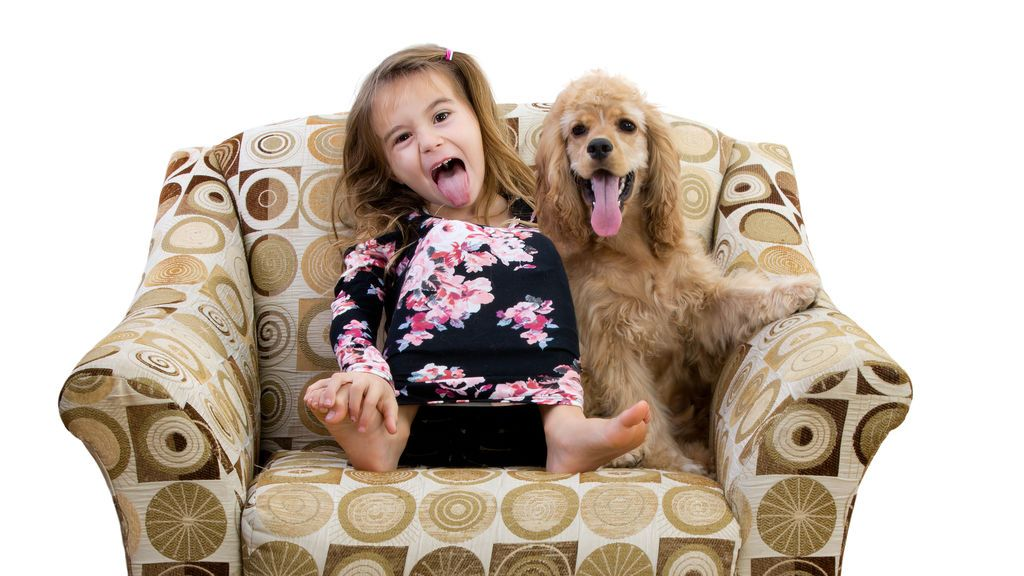 Los perros imitan a sus dueños y a otros canes.