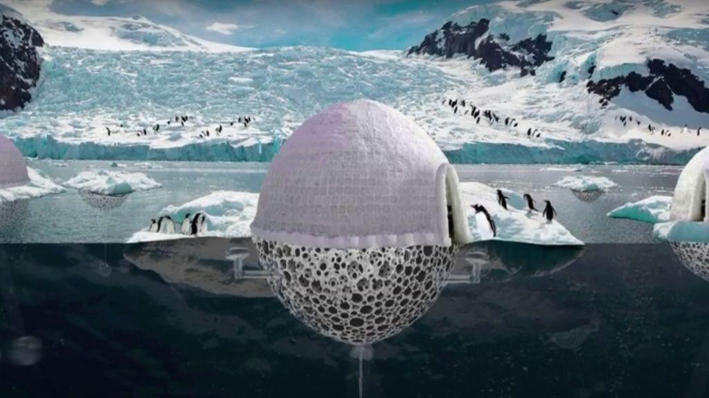 PenguinProtectionSystem2