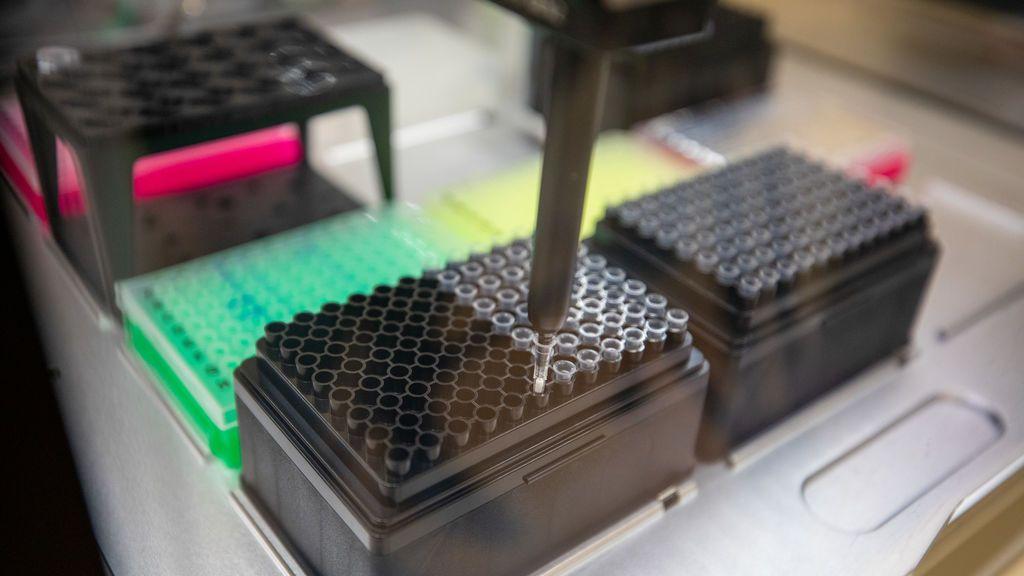 Sanidad refuerza la secuenciación de virus para vigilar la presencia de las nuevas variantes en España