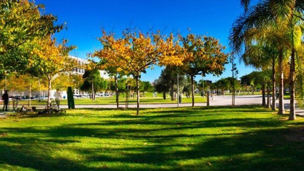 Las Universidades Públicas valencianas acuerdan la docencia online durante al menos el mes de febrero