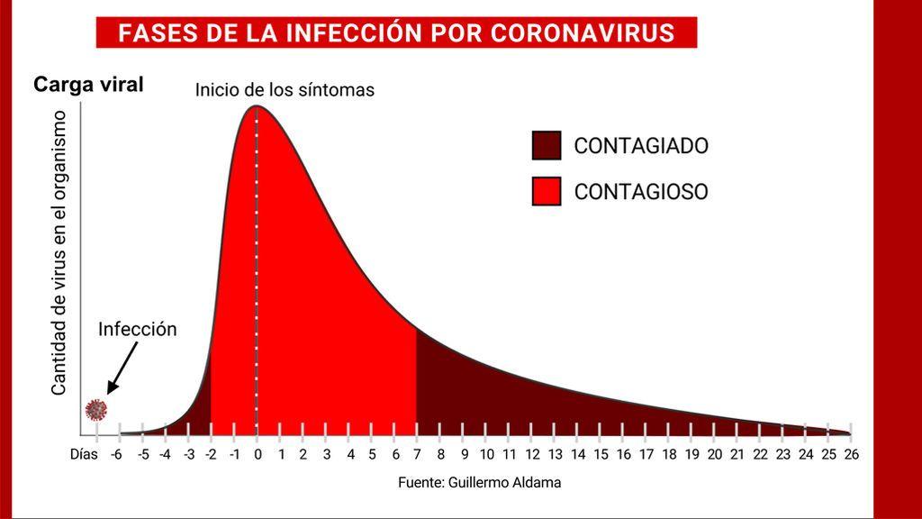 FASES-INFECCION-CORONAVIRUS