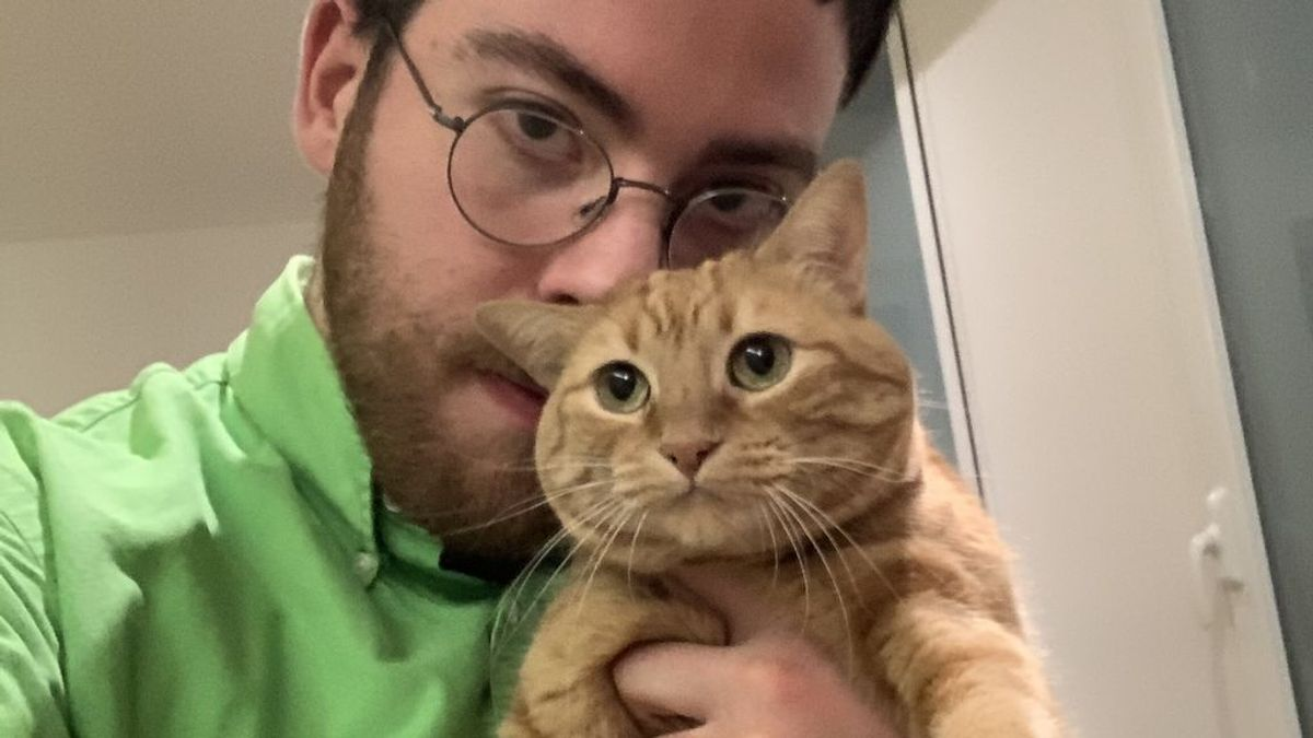Así ha cambiado mi vida desde que vivo con una gata