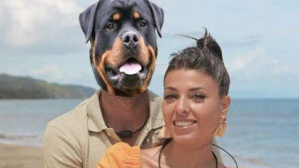 La luz de la tentación, Lola y su perro Horus revolucionan las redes sociales: los mejores memes del segundo programa
