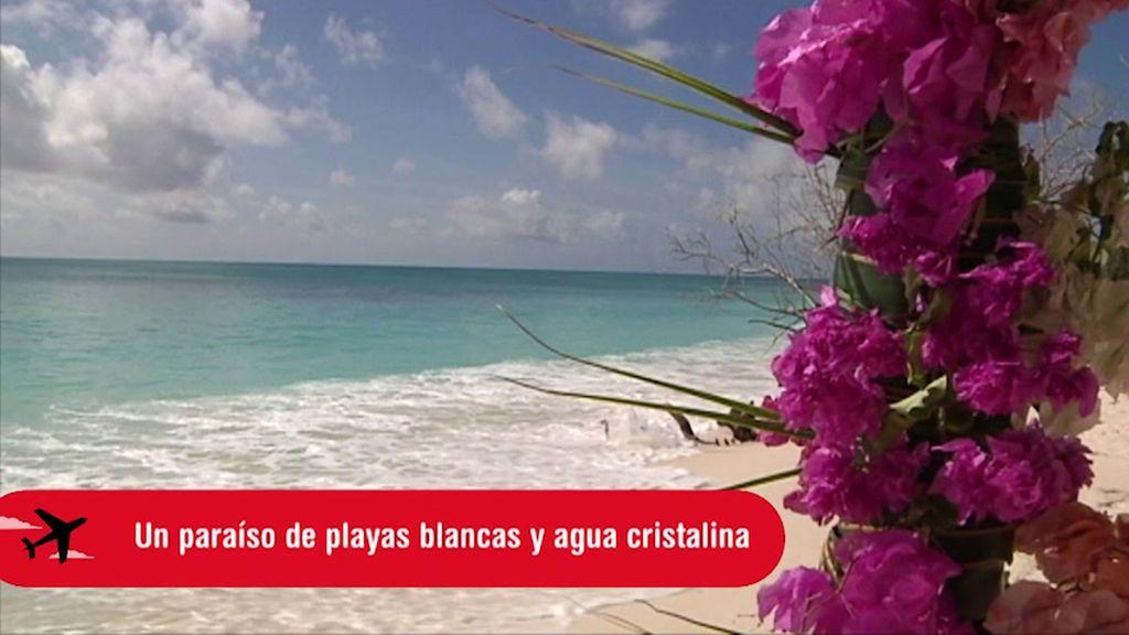 Planes Cuatro: Seychelles