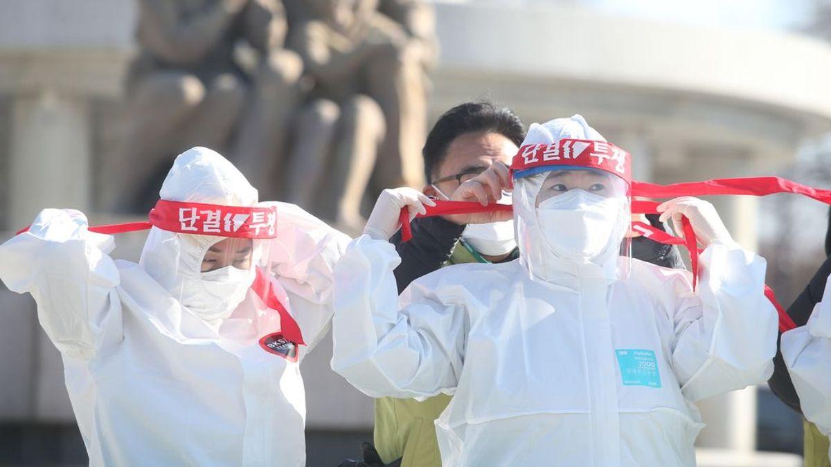 Corea del Sur hará test de coronavirus a gatos y perros: si dan positivo, los dueños tendrán que aislarse