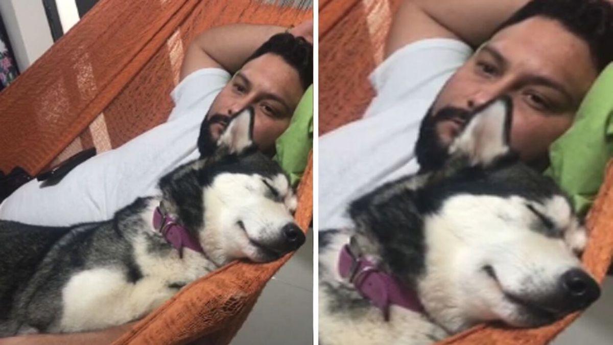 Deja en casa a su mascota con su pareja y cuando regresa se encuentra con una bonita imagen