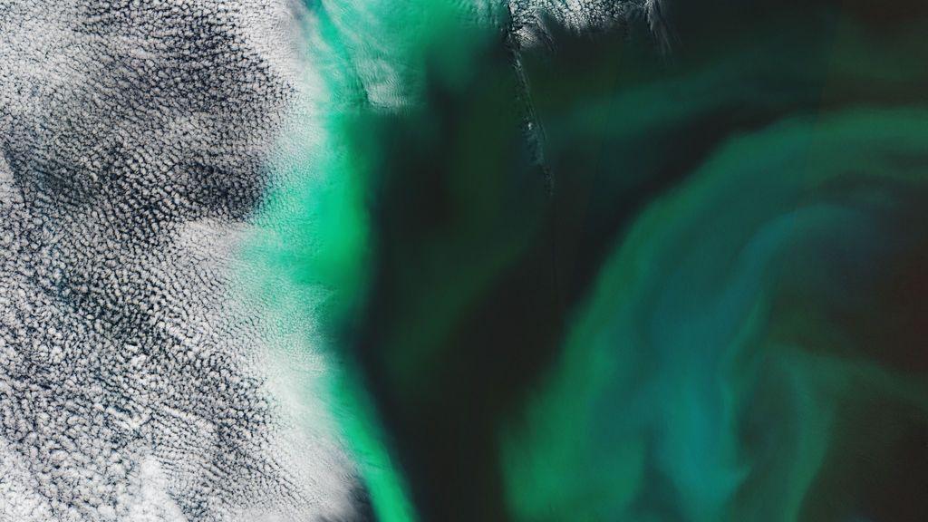 Esta imagen que parece una aurora boreal es en realidad el océano: ¿por qué tiene esos colores?