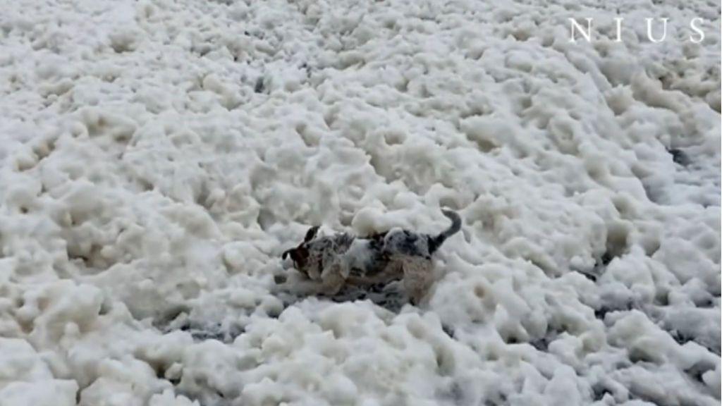 Espuma blanca en Reino Unido