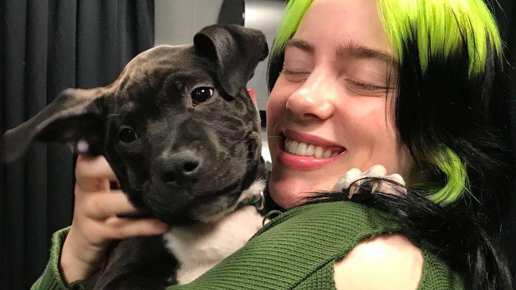 Billie Eilish celebra el cumpleaños de su perrito adoptado: el primer año de Shark