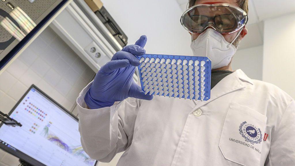 A vueltas con el coronavirus: ¿se puede mezclar con otros y crear uno más potente en una nueva pandemia?
