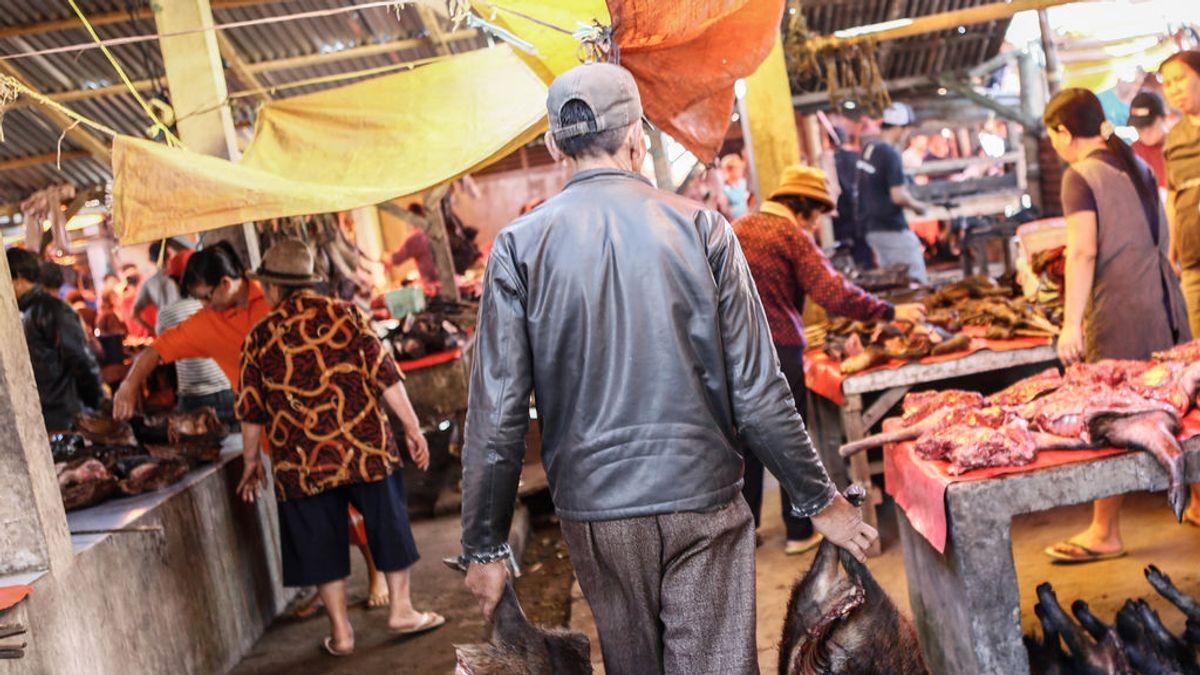 La enfermedad X, una amenaza que que aviva el miedo a vivir una oleada de pandemias