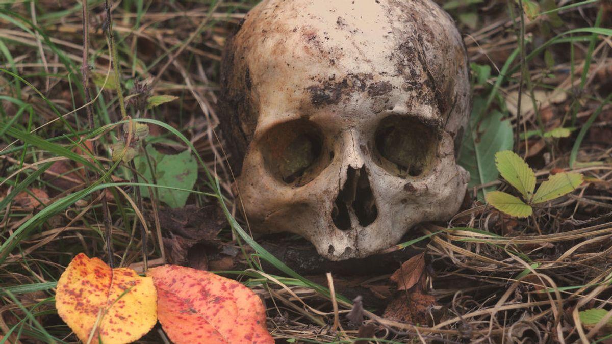 Un caníbal que mató a tres de sus amigos y se los comió es encarcelado de por vida en Rusia