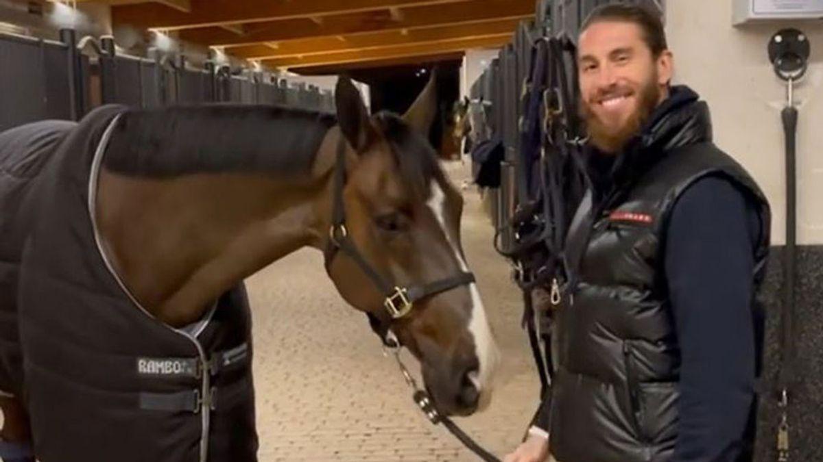 La última excentricidad de los Ramos Rubio: el futbolista se compra un caballo valorado en más de un millón de euros