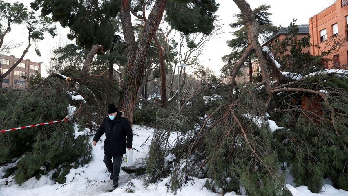 Filomena: de los riesgos de la nieve a los de los incendios