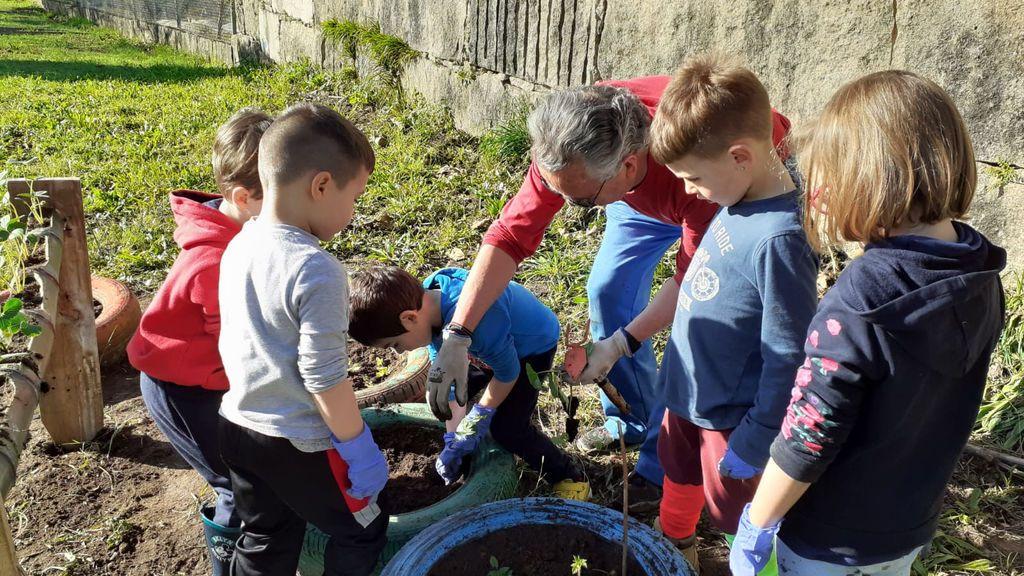 Los niños de la escuela, aprendiendo en el huerto