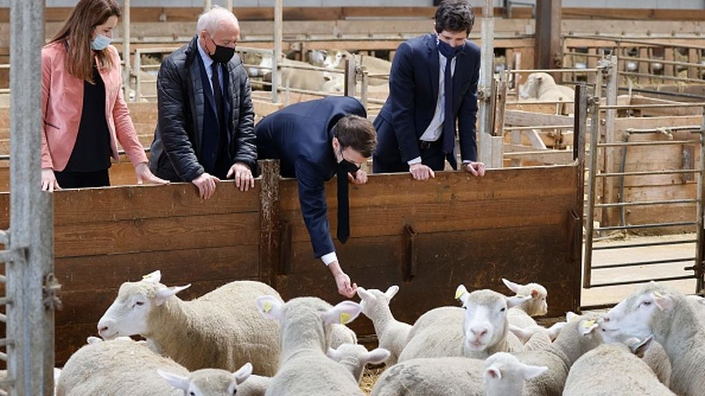 """¿Qué es el """"islamoizquierdismo"""" que ha desatado la polémica en Francia?"""
