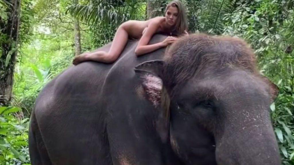 Desnuda sobre un elefante de Sumatra